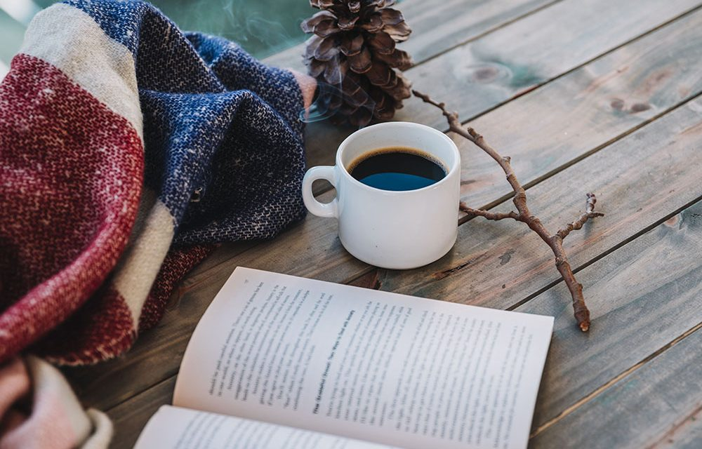 5  cărți de citit în vacanța de iarnă (utile Freelancerilor)