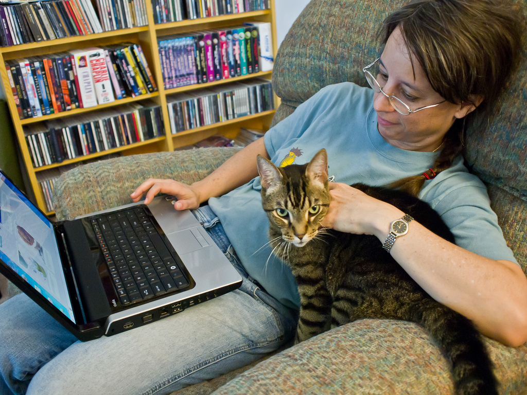 Eşti un blogger freelancer de succes?